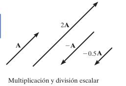 Operaciones de Escalares y Vectores